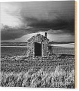 Derelict Stone Shed In  Auvergne. France Wood Print by Bernard Jaubert
