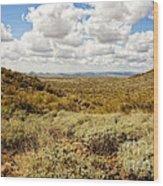 Desert Afternoon Delight Wood Print