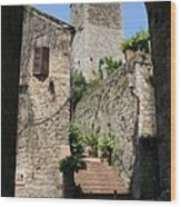 Desert Alley In San Gimignano Wood Print