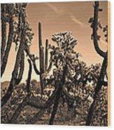 Desert At Dusk Wood Print