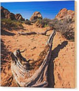 Desert Driftwood Wood Print