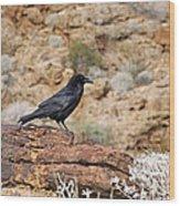 Jet Black Desert Dweller Wood Print