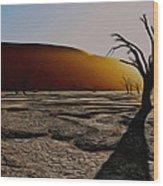 Desert Floor Wood Print
