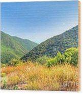 Desert Greens And Yellows Wood Print
