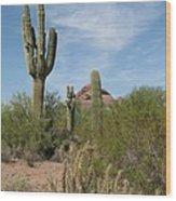 Desert Landscape With Saguaro Wood Print
