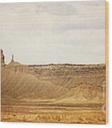 Desert Landscape2 Wood Print