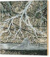 Desert Lightning Wood Print