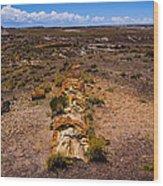 Desert Log Wood Print