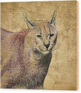 Desert Lynx Wood Print