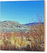 Desert Wood Print