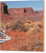 Desert Monuments Wood Print