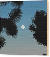 Desert Moon Wood Print