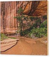 Desert Oasis - Coyote Gulch - Utah Wood Print
