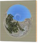 Desert Orb  Wood Print