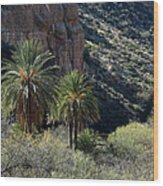 Desert Palms Wood Print
