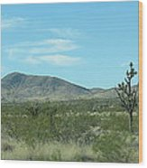 Desert Panoramic Wood Print