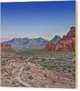 Desert Path Wood Print