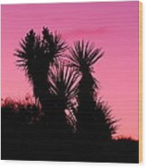 Desert Pink Wood Print