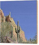 Desert Plants Of The Superstitions Wood Print