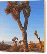 Desert Poet Wood Print