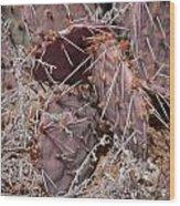 Desert Prickly Pear Cactus Wood Print