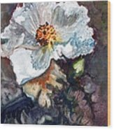 Desert Prickly Poppy Wood Print