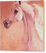 Desert Prince Arabian Stallion Wood Print