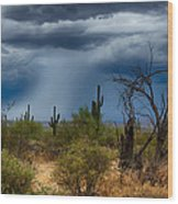 Desert Rains  Wood Print