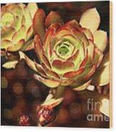 Desert Roses Wood Print
