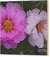 Desert Roses In Purple And Pink Wood Print