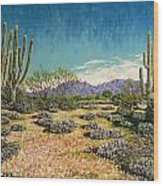 Desert Scene Near Carefree Wood Print