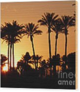 Desert Silhouette Sunrise Wood Print