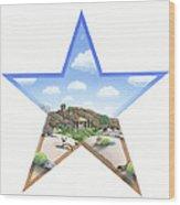 Desert Star Wood Print