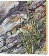 Desert Stillness Wood Print by Caroline Owen-Doar