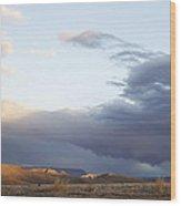 Desert Sun Wood Print