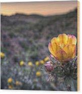 Desert Sunset Blossom Wood Print