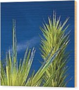 Desert Towers - Detail Wood Print