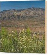 Desert Valley Scene 7 Wood Print