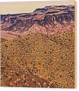 Desert View In Arizona By The Colorado River Wood Print