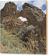 Desert Wildflowers Grand Arch  Wood Print