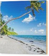 Deserted Beach And Palm Trees Wood Print