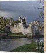 Desmond Castle Wood Print