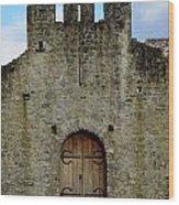 Desmond Castle Doors Wood Print