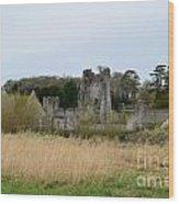 Desmond Castle Views Wood Print