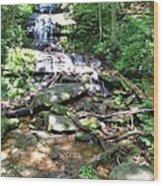 Desoto Falls Wood Print