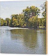 Desplaines River Wood Print