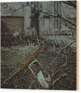 Destruction Wood Print by Margie Hurwich