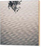 Detach Wood Print