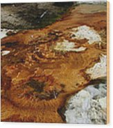 Detail Mammoth Springs Yellowstone Wood Print