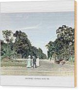 Detroit - Belle Isle Park - Central Avenue - 1905 Wood Print